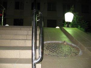 Rampa de acces la o terasa 2
